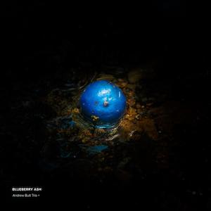 Andrew Butt Trio+ Blueberry Ash album cover